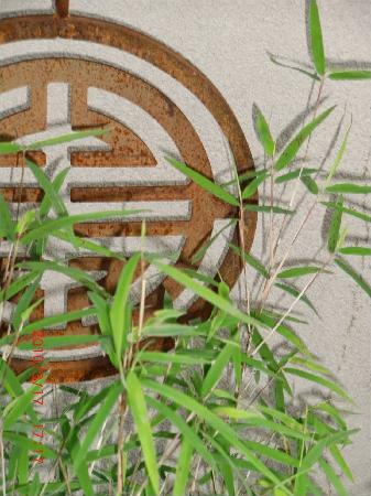 A TreeHouse Bed and Breakfast: Front Garden Bamboo