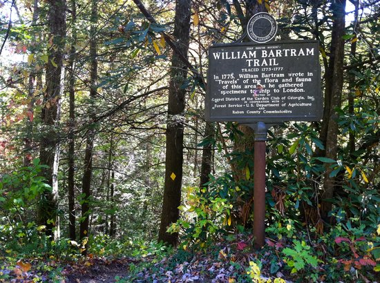 Bartram Trail on Warwoman Road, Clayton, Ga