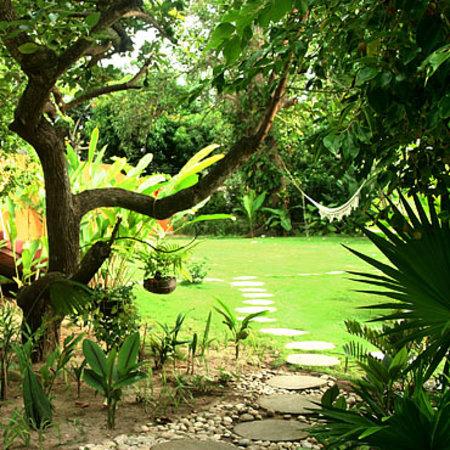 Casa Mori : Garden