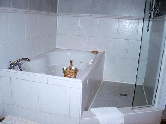 Mettawas-End Bed and Breakfast: Walker room private bathroom tub & shower combo