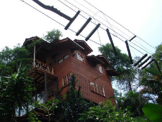 Hotel Monte Campana: tree house