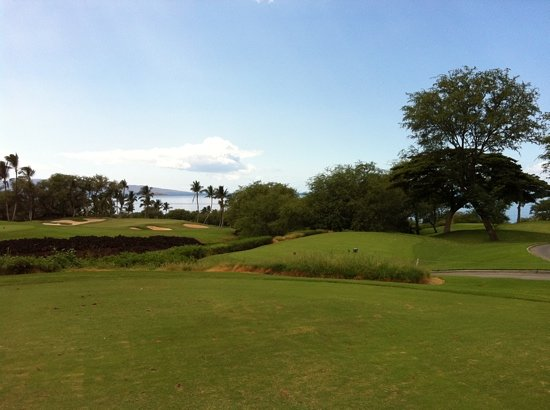 Wailea Golf Club: par 3 on front nine