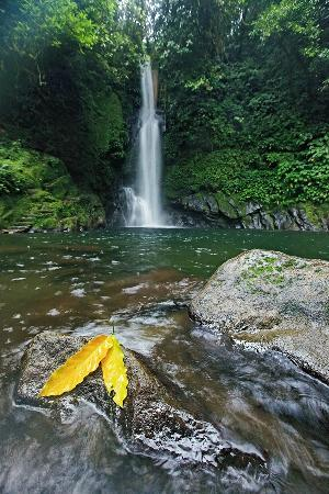 Malabsay Falls - the most famous waterfalls in Naga and Bicol