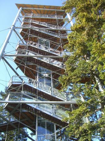 Scheidegg, Alemania: Ansicht Turm