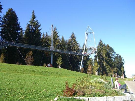 Skywalk Allgau Naturerlebnispark