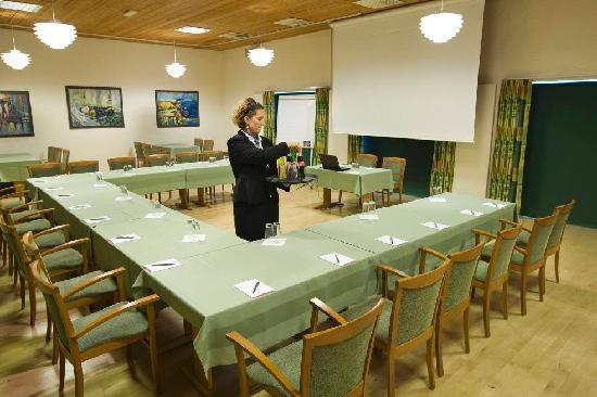 Hotel DalGas: Meeting room