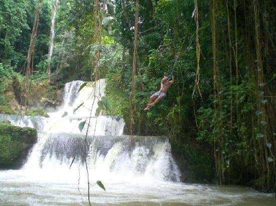 Iberostar Rose Hall Suites: Rope swing at the YS waterfalls...a must do excursion!