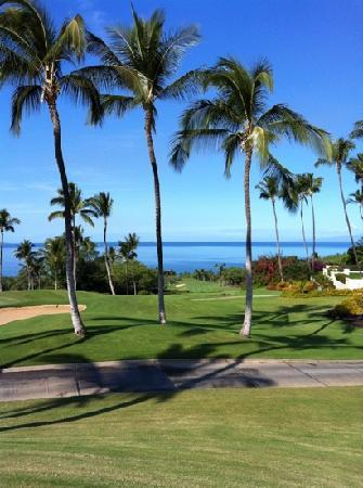 Wailea Golf Club: view from just outside restaurant lookimg down # 1 at Emerald course