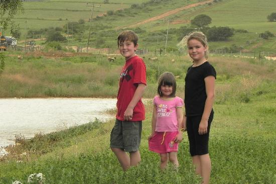 The Green Tree Guest Cottages: On the farm at the dam