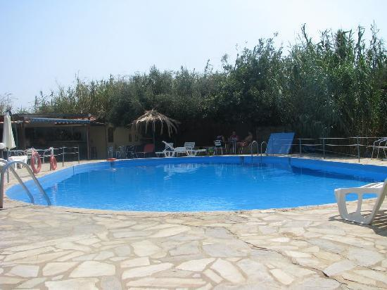 Minoas Hotel: The pool and snack bar