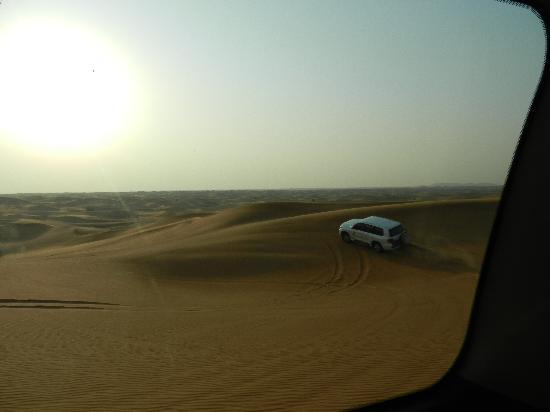 Lama Desert Tours & Cruises L.L.C. : On the dunes