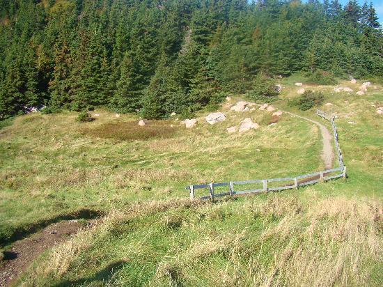Keltic Lodge Resort & Spa: Property hiking trail