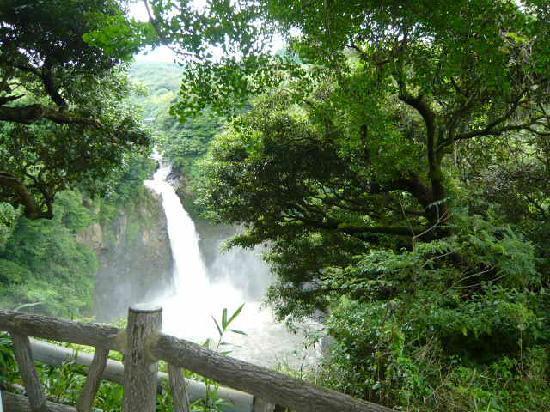 Sugaruga Falls: 滝(展望台から)