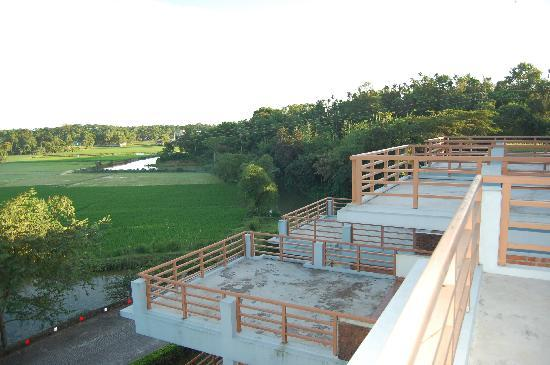 Nazimgarh Garden Resort: From the terrace rooms