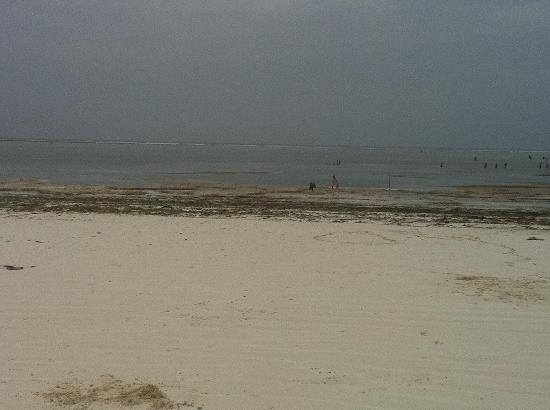 foto reale della spiaggia villa dida