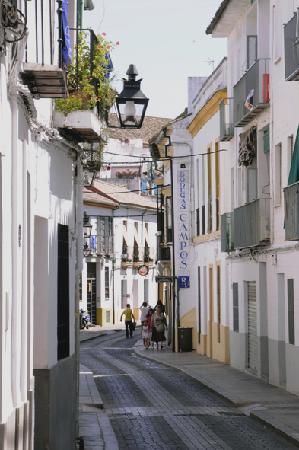 Bodegas Campos : Calle Lineros
