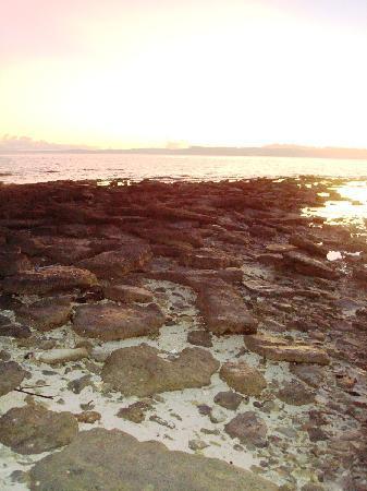 Calanggaman Island: rocks