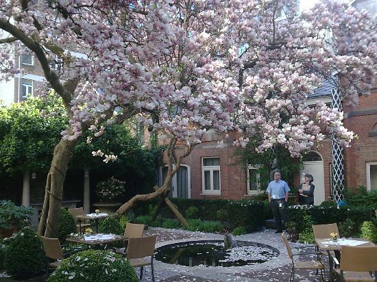 Stanhope Hotel: giardino interno e incantato
