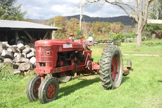The old tractor out back