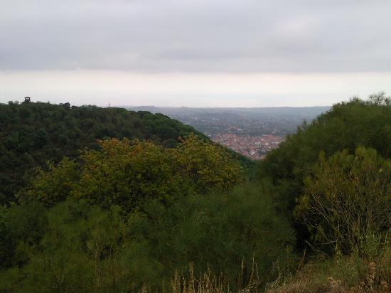 B&B Sotto il Vulcano: View from Monti Rossi
