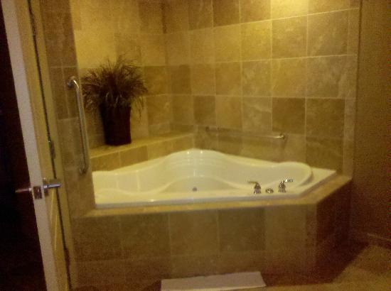Hampton Inn & Suites Billings West I-90 : In-room hot tub