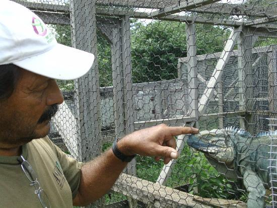 Blue Iguana Recovery Program Safari Tour: Alberto and friend