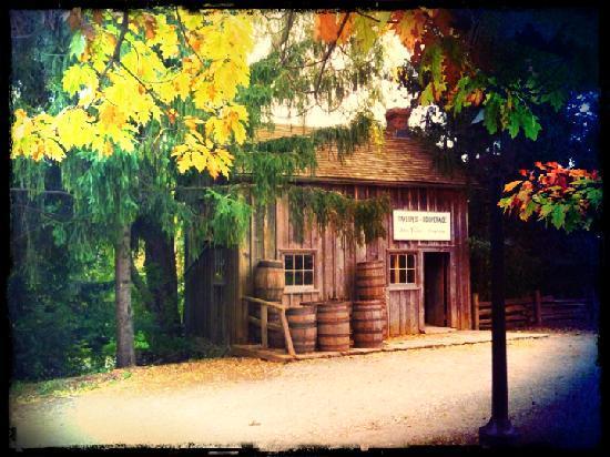 Black Creek Pioneer Village: ...eines von über 42 Häusern.