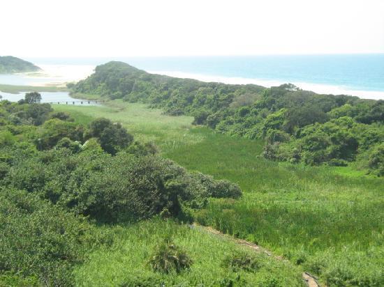 Breakers Resort: ocean views