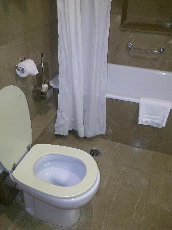 Pentelikon Hotel: Toilet seat and shower curtain