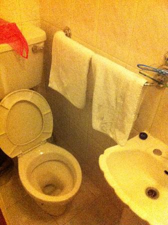London Carlton Hotel: Les toilettes... spacieuses !