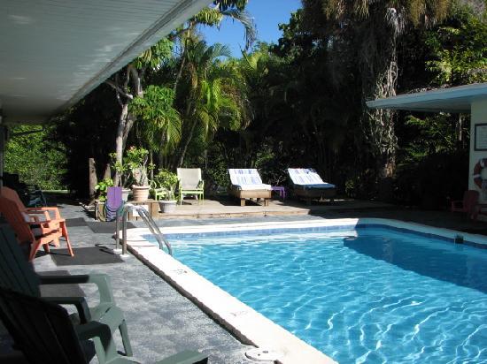 صنشاين آيلاند إن: Great view of the pool from every room
