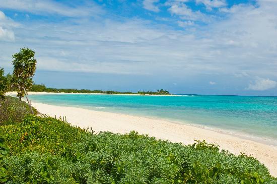 Paradisus Playa del Carmen La Perla: Jungle and Beach