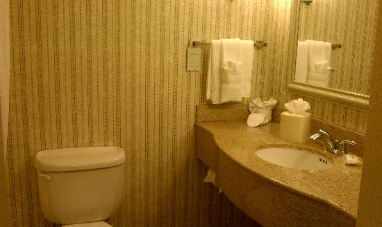 Hilton Garden Inn Calabasas: Toilet/Sink