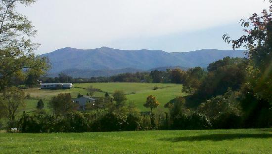 Piney Hill Bed & Breakfast: The View from Piney Hill outside the Rosebud Cottage