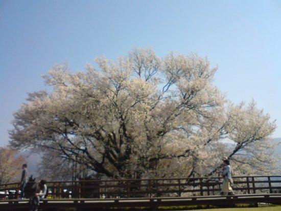 Isshingyo Park