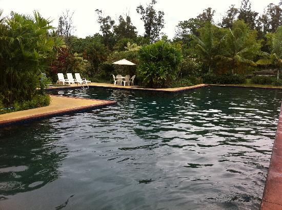Kalani : The pool :)