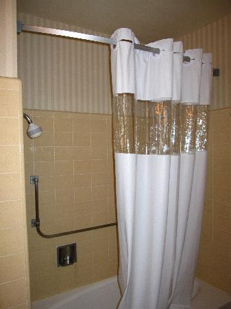 Studio City Court Yard Hotel: Shower - notice showerhead?  It's just over 5 feet from the bottom of the tub