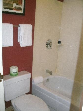Red Roof Inn Chicago - Northbrook / Deerfield : Tiny bathroom, but GREAT shower