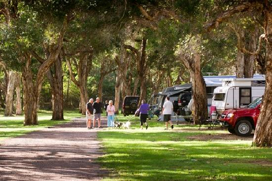 North Coast Holiday Parks North Haven: Beachfront Holiday Park