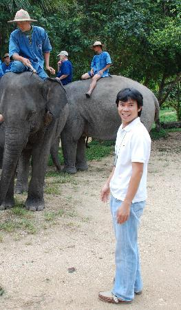 Lanna Boutique Travel: Opportunities With Elephants