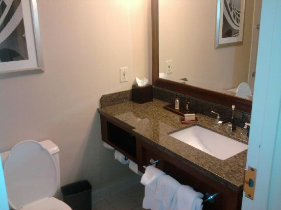 Chattanooga Marriott Downtown: Tiny Bathroom