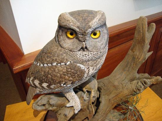 The Bennington Center for the Arts: The display of sculpted birds from wood was amazing!