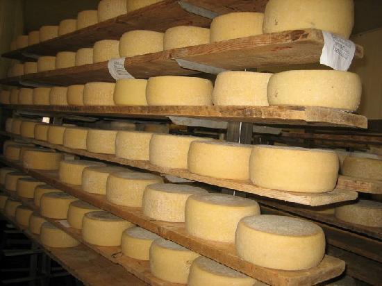 Agriturismo I Gretacci: formaggi di nostra produzione