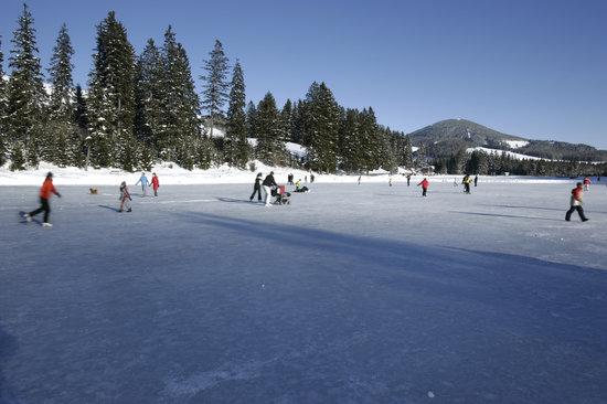 Vital Hotel Styria: Eislaufen am Teichalmsee
