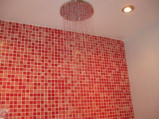 Woodstocker Inn: The fabulous rain shower!
