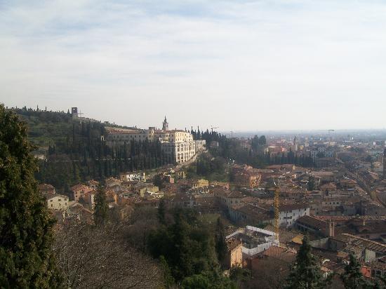 Piazzale Castel San Pietro: Vista da Castel San Pietro