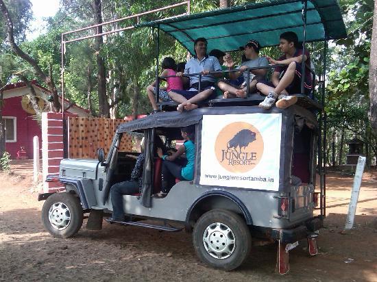Amba, الهند: The Jungle Safari Tours