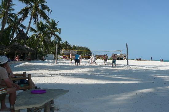 Pinewood Beach Resort & Spa: Volleyball on the beach