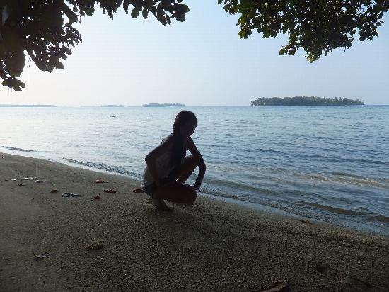 プトゥリ アイランド リゾート ホテル, ビーチは無いですが海は綺麗でした