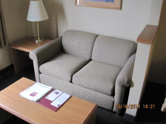 Comfort Suites Airport : Couch